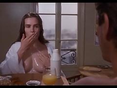 Bitterer Mond (1992)