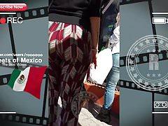 Merveilleux butin de promenade (Mexique 2018)