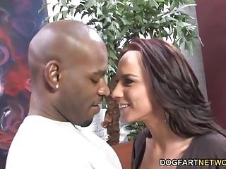 indian black tits
