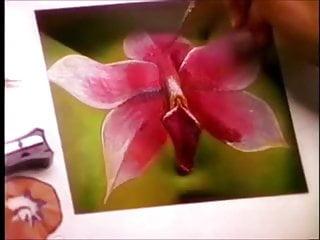 Essence Beauty XnXX videos • xnxx2.site