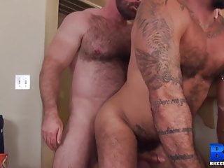 BREEDMERAW Bear Brad Kalvo Raw Breeds Hairy Alessio Romero