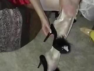 Shiny RHT stocking