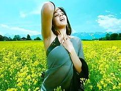 Bollywood + Hollywood Actress Hot SAREE Shape, Big Ass + Big