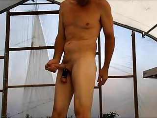 Hot house tease with 3 inch stretcher