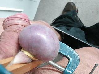 سکس گی clamp tight purple testicle sex toy  hd videos bdsm